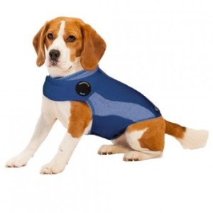 ThunderShirt Blue